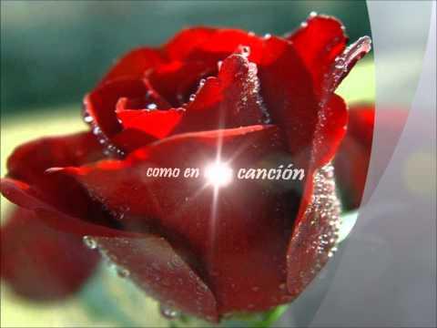 Como duele el amor -- Guillermo Plata (Lyrics)