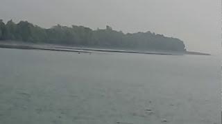 getlinkyoutube.com-Sundarban Tiger