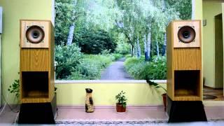 getlinkyoutube.com-10ГДШ-1-4 в Свернутом рупоре