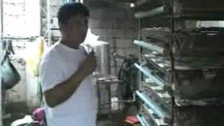 getlinkyoutube.com-Atovi user Mr. Romy Tusara (Quails)