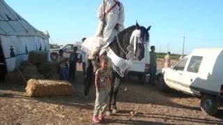 getlinkyoutube.com-fantasia maroc beni oun 2010