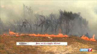 Portugal forest fire controlled after 2 days battle | World