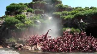 getlinkyoutube.com-Splash Mountain POV Log Flume Water Ride Tokyo Disneyland Japan 1080p HD
