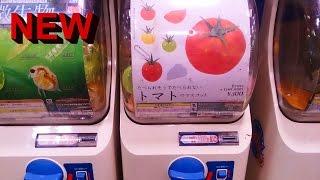 【ガシャポン】食べられそうで食べられないトマトのマスコットGashapon