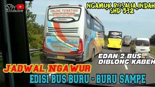 ad yg Panas B29 Bejeu gengsi diTempel bus Alfarruq Mr.Gaplex width=