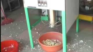 getlinkyoutube.com-TF 120 Dry garlic peeler process moive