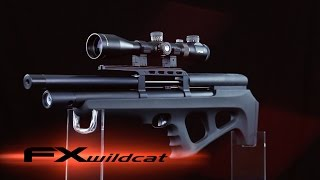getlinkyoutube.com-FX Wildcat Bullpup Air Rifle