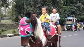 getlinkyoutube.com-Billy naik kuda di Bandung
