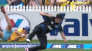 getlinkyoutube.com-Astonishing catch by BALL BOY in cricket!!! Give the kid a game!!!