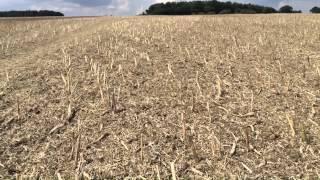 Claydon Straw Harrowed Twice