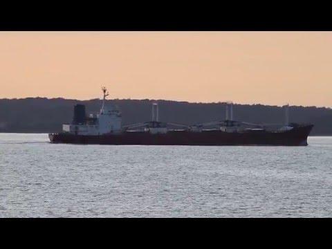 Click to view video SARAMATI - IMO 8503670 - Germany - Kieler Förde