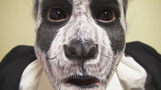 getlinkyoutube.com-パンダメイク方法(化粧)Panda Makeup Tutorial