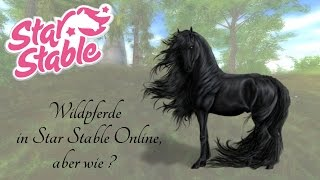 getlinkyoutube.com-(veraltetes Video)  Wildpferde in Star Stable Online, aber wie ?