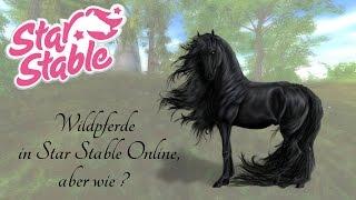 (veraltetes Video)  Wildpferde in Star Stable Online, aber wie ?
