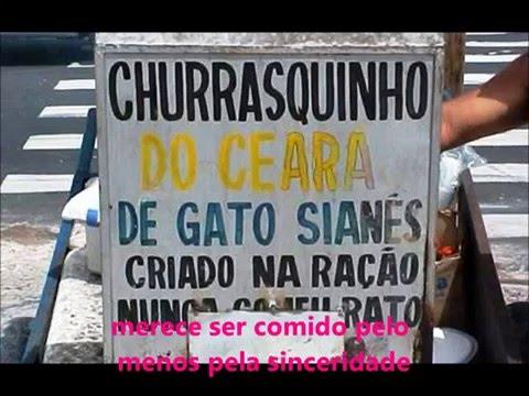 PIADAS PRONTAS - Erros de português ( dos Brasileiros)
