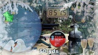 Kalibrgun Cricket .25 -  a 50 yard card & AIRGUN GIVEAWAY
