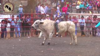 getlinkyoutube.com-¡¡SANGRE EN EL RUEDO!! Rancho La Mision En Tiripetio Michoacan 18 Febrero 2015