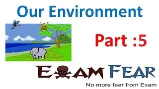 Biology Our Environment part 5 (Food chain) CBSE class 10 X