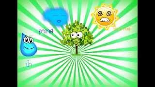 getlinkyoutube.com-ปัจจัยที่มีผลต่อการเจิญเติบโตของพืช