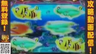 getlinkyoutube.com-CRスーパー海物語 IN 沖縄2『赤魚群』