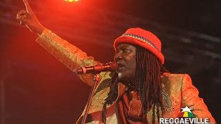 getlinkyoutube.com-Alpha Blondy - Peace In Liberia @ Reggae Jam 2015