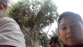 getlinkyoutube.com-Mis amigos de danza xD
