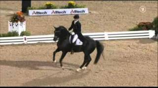 getlinkyoutube.com-Totilas & Edward Gal WEG Grand Prix Freestyle