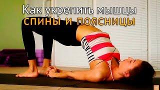 И.м. данилова. в своей книге остеохондроз для профессионального пациента