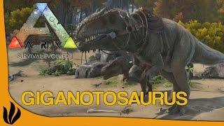 getlinkyoutube.com-[FR] ARK: Survival Evolved - Giganotosaurus, Boucliers et Epée