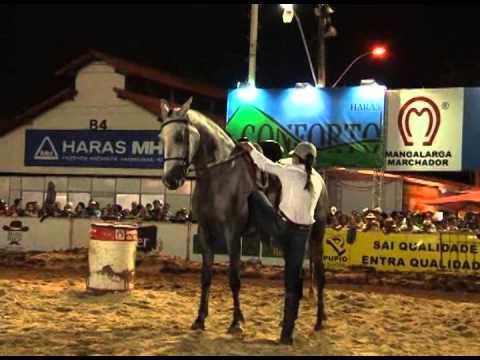 Mangalarga Marchador TV - programa 277