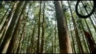 getlinkyoutube.com-Rexona Men Adventure - Publicidad