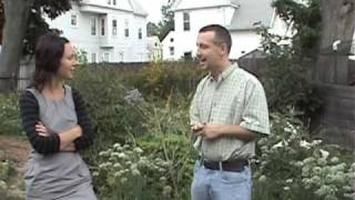 Perennial Polyculture Prevails over PeakOil