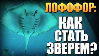 getlinkyoutube.com-GTA 5 - Как Играть за Животных? (Лофофоры) #10