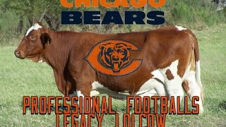 The Chicago Bears: Professional Football's Legacy Lolcow