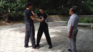 getlinkyoutube.com-San Sou / 散手(洪家拳种)