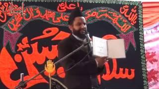 Allama Azhar Abbas Haideri  2nd Safar 1434  Tahlianwala Jhelum