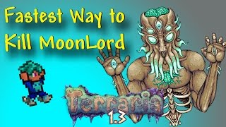 How To Kill The Moon Lord The FASTEST Way Possible - Terraria 1.3 (Parody)