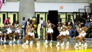 nsu cheerleaders 2011