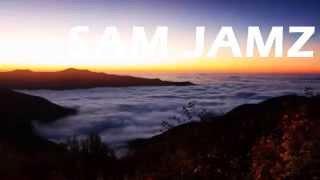 Sam Jamz feat T-Sharp - HOLY HOLY