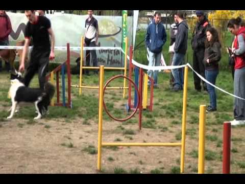 Animax - Fashion Dog Show - 14 aprilie 2013, Parcul Herastrau