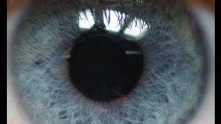 getlinkyoutube.com-Sekret niebieskich oczu [Pixel]