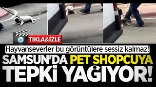Samsun'da Pet Shopcuya tepki yağıyor!