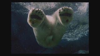 getlinkyoutube.com-[イヤホン推奨] 炭酸水の中に潜り込む/Dive into Sparkling water [Wear earphones]