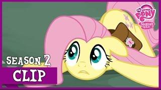 """getlinkyoutube.com-MLP: FiM – Fluttershy The Doormat """"Putting Your Hoof Down"""" [HD]"""