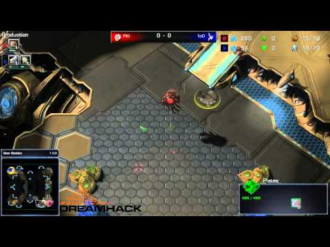 DH Summer 2013 - PiG(Z) vs ToD(P) G1