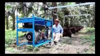getlinkyoutube.com-OIL PALM CABLEWAY CENTRO ACEROS
