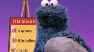 getlinkyoutube.com-Sesame Street: Who's Alive?