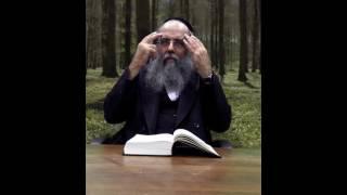 התורה שבכתב והתורה שבעל פה באמת -  השם השם מאת הרב אהרון ישכיל