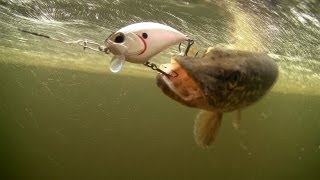 getlinkyoutube.com-Spring pike fishing. DUO lures for bass muskie perch. Рыбалка щука на воблер.
