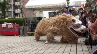 浅草ビートフェスティバル 2009 ◆ 琉球國祭り太鼓 獅子演舞
